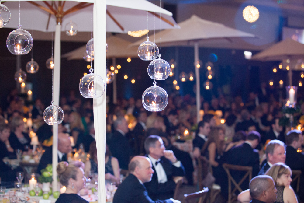 American Cancer Society Discovery Ball 2014_2103_0427web